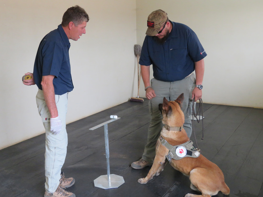 ewt-sniffer-dogs-during-training