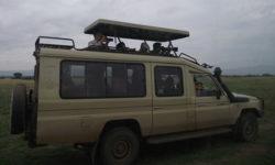 safari-land-cruiser
