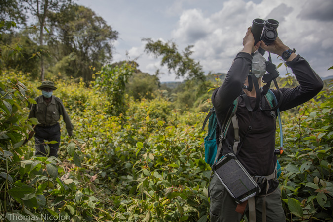 Kahuzi-Biega National Park - Congo