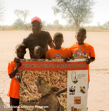 zambian-carnivore-program