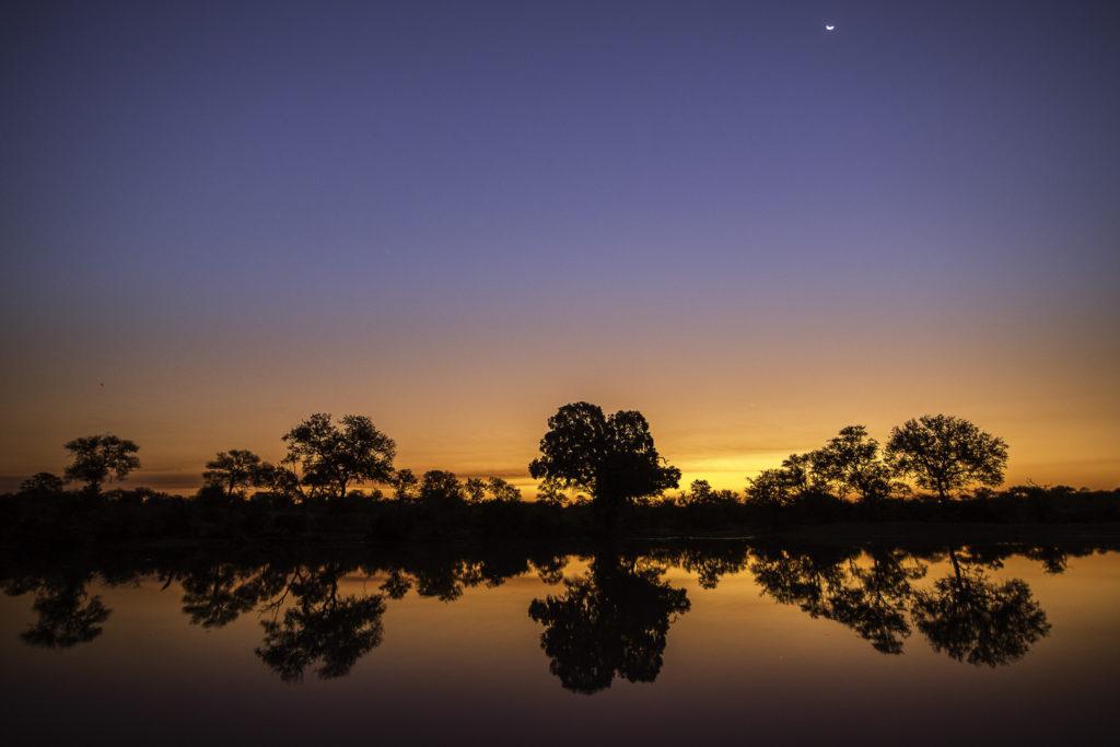 brendon-jennings-umlani-timbavati-kruger-photographic-safari-sunset