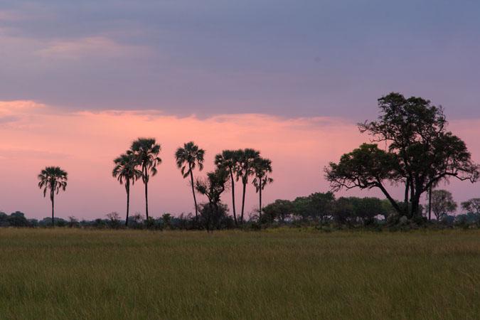 botswana-dawn