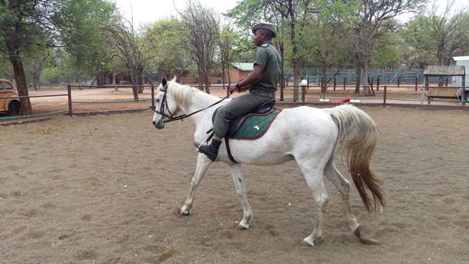Rhino-horse-riding-Kruger-National-Park