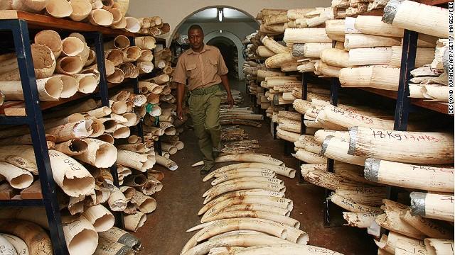 ivory-stock-piles