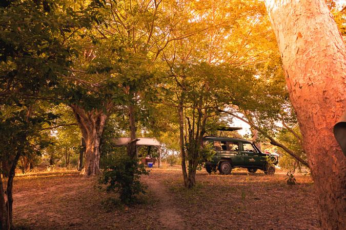 campsite-selous