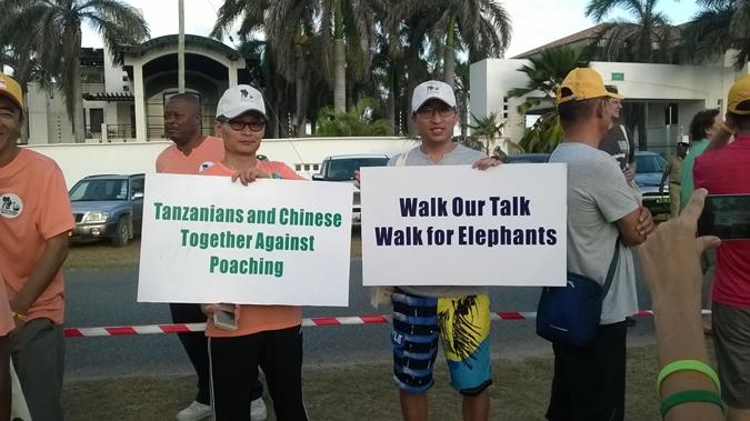 China-elephants-ivory-Tanzania