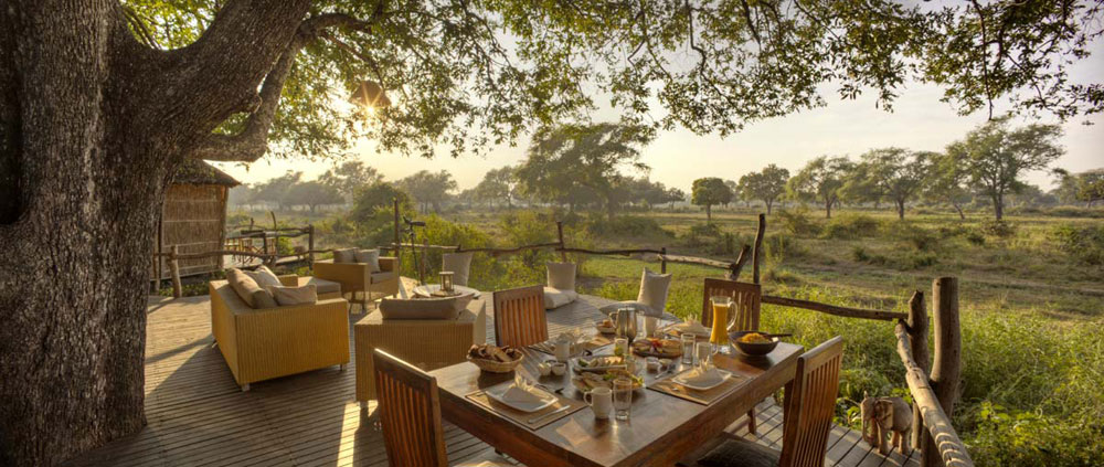 The Jackal-Berry tree house at Flatdogs Camp is built around three live African ebony trees (Diospyros mespiliformis) with unspoilt views out across a dambo and lagoon system which is regularly visited by elephant and giraffe.