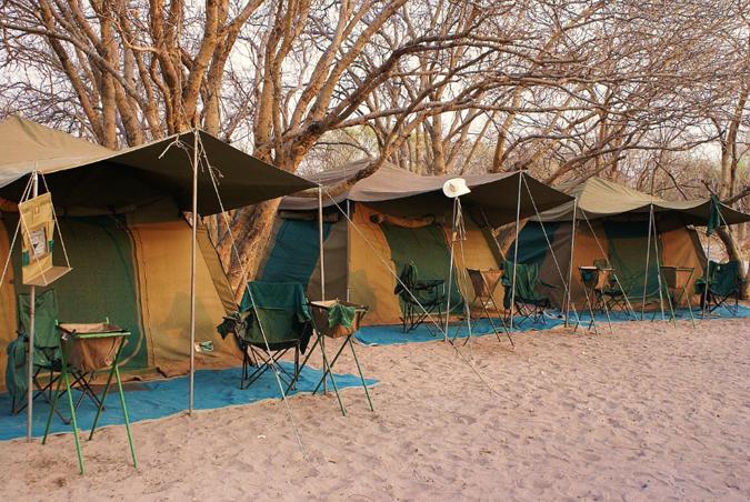 botswana-camp