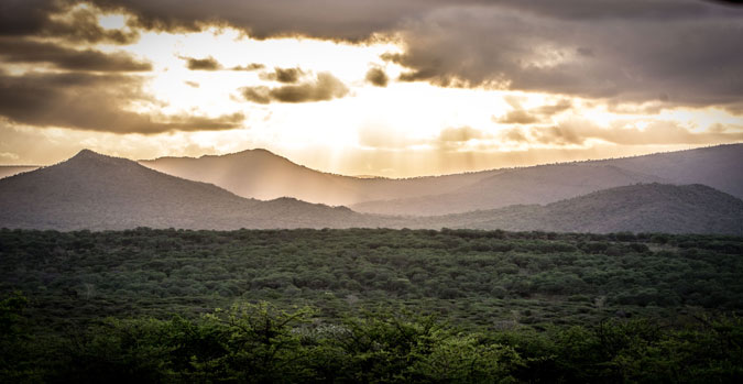 storm-safari-wilderness