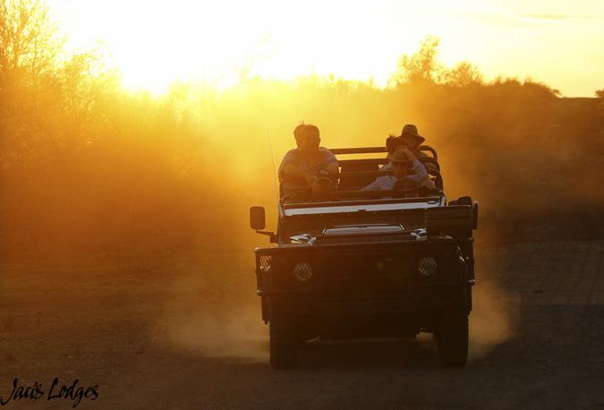 game-drive-sunrise