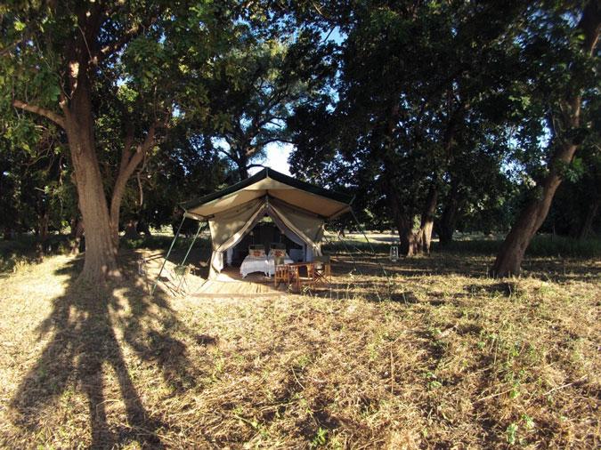 bush-camp