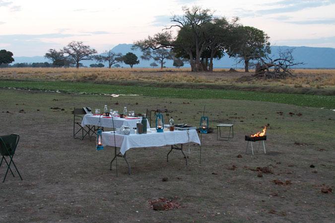 bush-camp-dinner