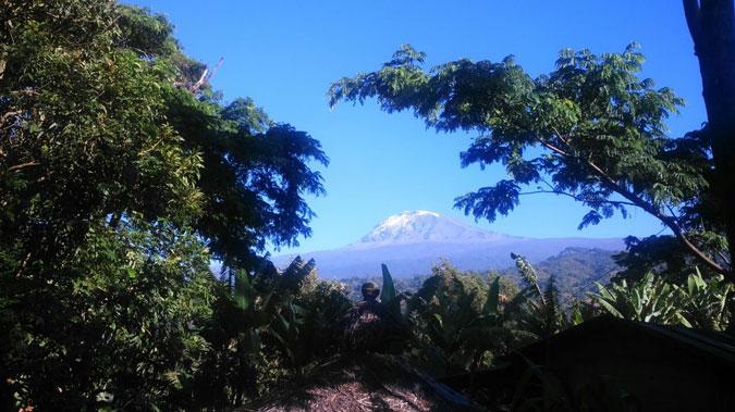 usambara-mountains