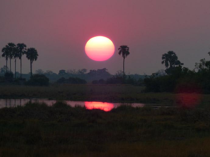 Selinda-sunrise