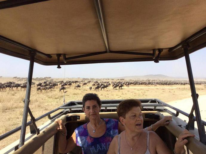 Serengeti-Migrations