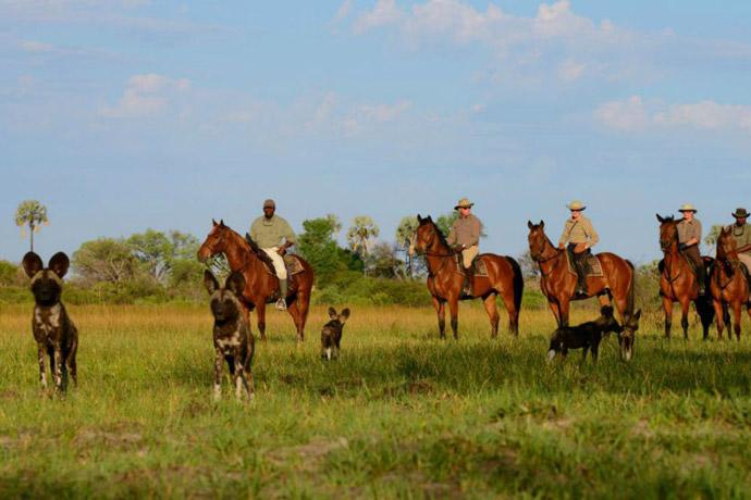 African-Horseback-Safari