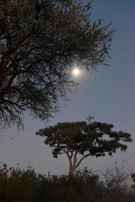 rwanda-moon