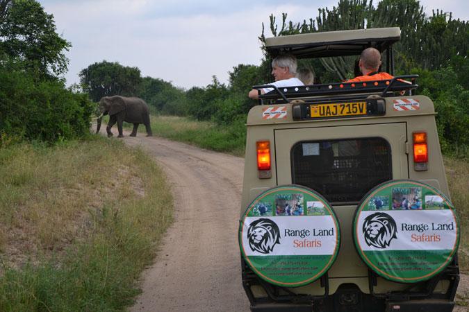 rangeland-safari-drive