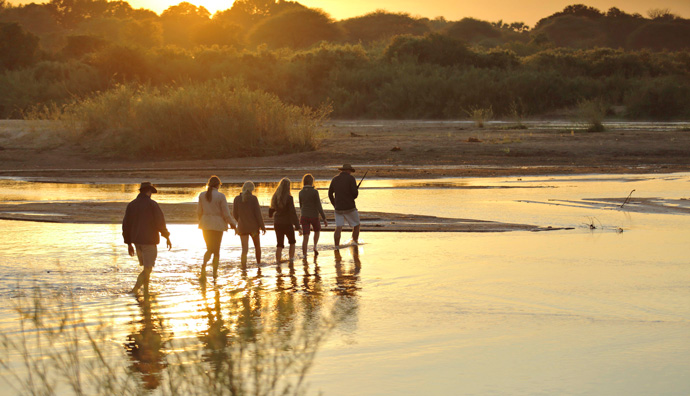 Kichaka-walking-safaris