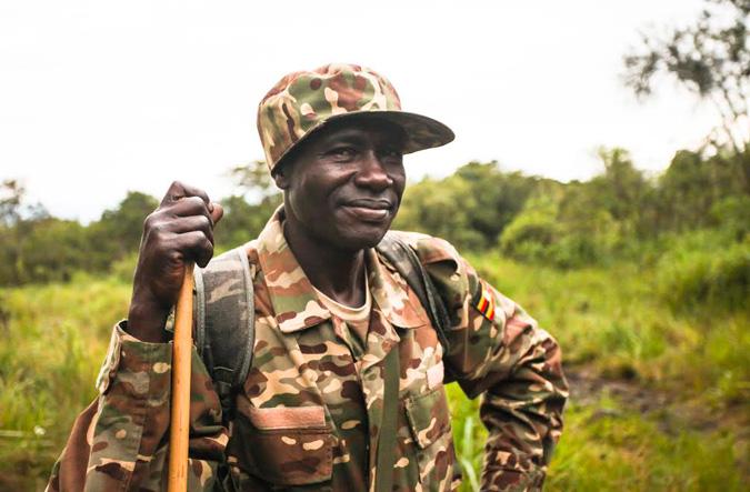 Uganda Wildlife Authority ranger
