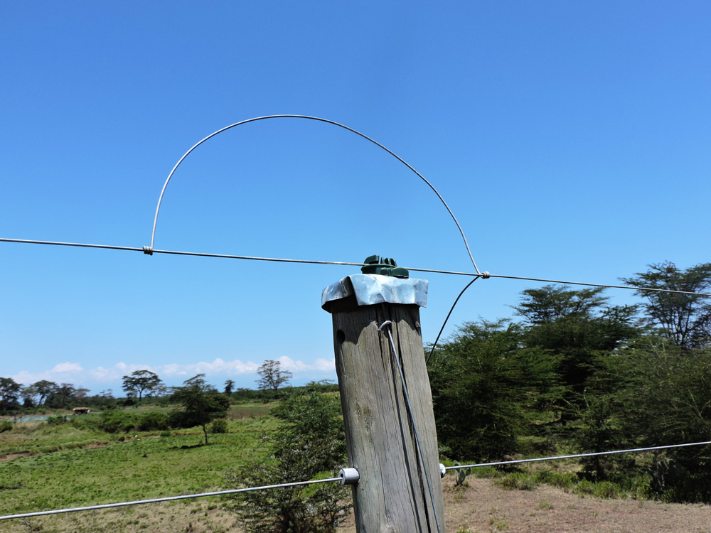 The electric fence surrounding Ol Pejeta