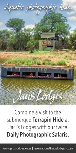 Jacis Lodges