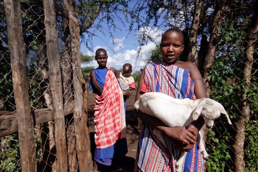 Young Maasai herders