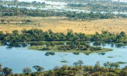 @Jessica Lohmann okavango delta