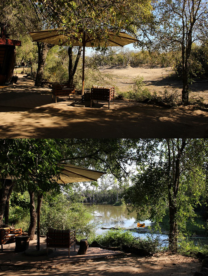 Cheetah Plains, before and after the rain