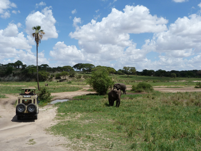 Tanzania, Viva Africa Tours
