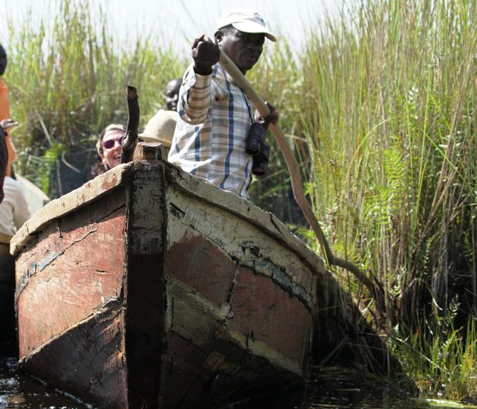 Canoe, Mabamba Bay, Uganda