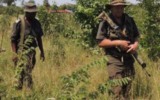 Defense Web, anti-poaching