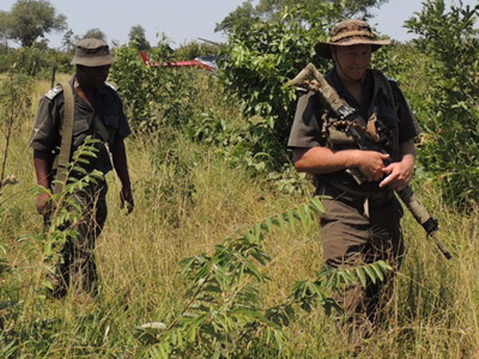 Defence Web, anti-poaching, poaching