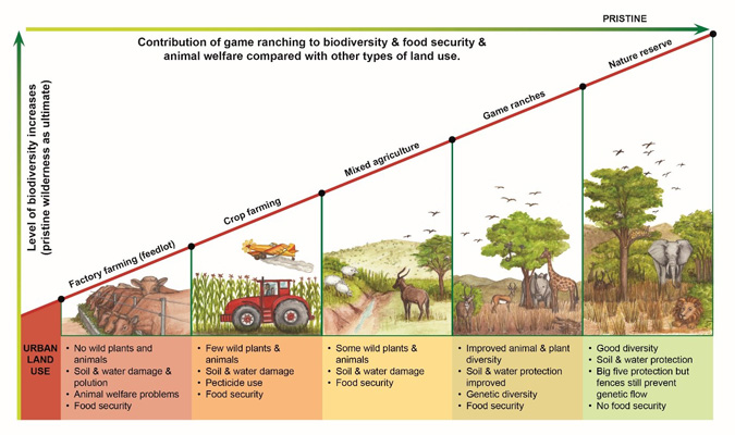Contribution of game ranching, conservation