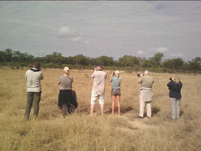 walking-safari