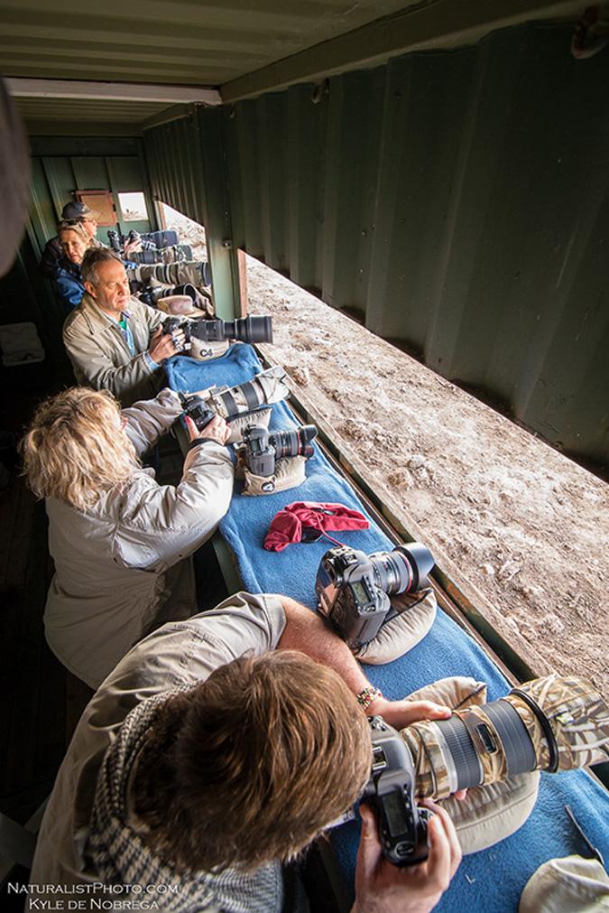 photographic hide, Mashatu, Botswana