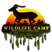 Wildlife Camp Zambia