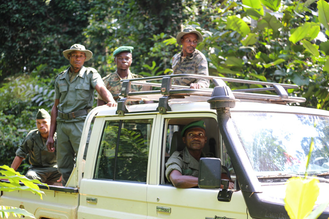 Special intervention unit, WCS, Congo