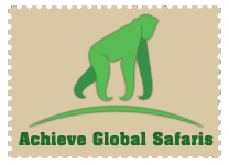 Achieve Global Safaris
