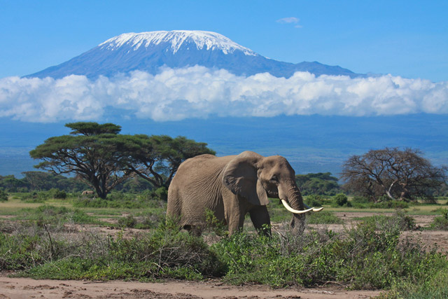 The 7 Natural Wonders of Africa Africa Geographic
