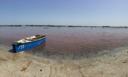 Lake Retba, Senegal, pink water, boat