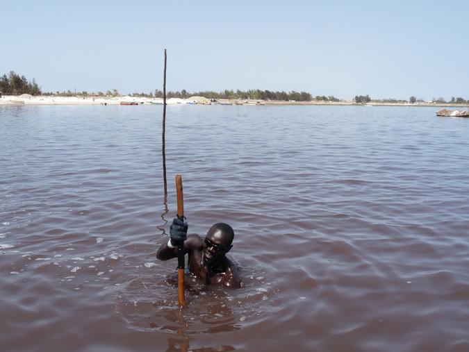 collecting salt, water, Lake Retba, Senegal