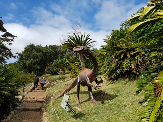 the extinction of cycads The government and the sa national biodiversity institute are in a race against time to save local cycads from extinction a report by the international union for.