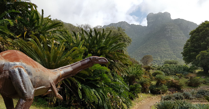 dinosaur and cycads, South Africa