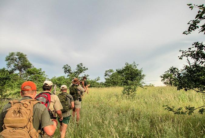 Walking safari, bush, green grass
