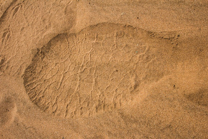 elephant track in the sand, South Africa