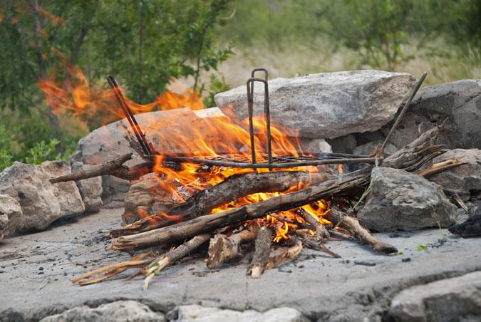 fire, fire pit, bush