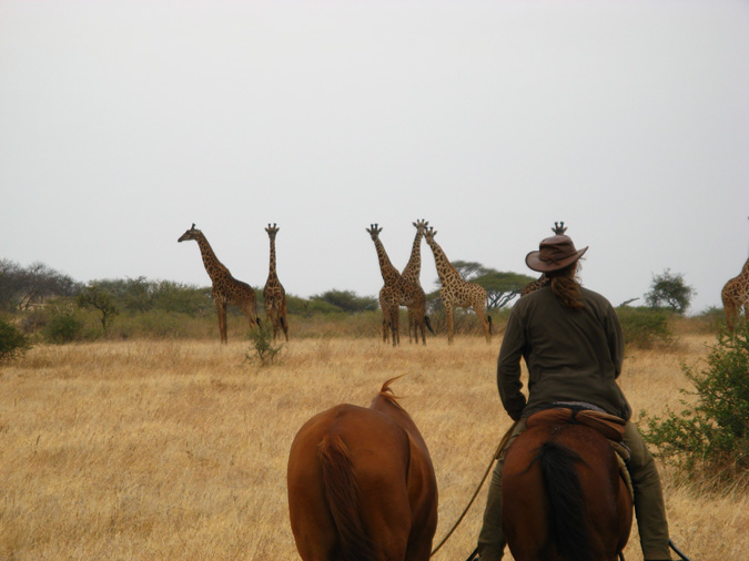 safari on horse back, Tanzania