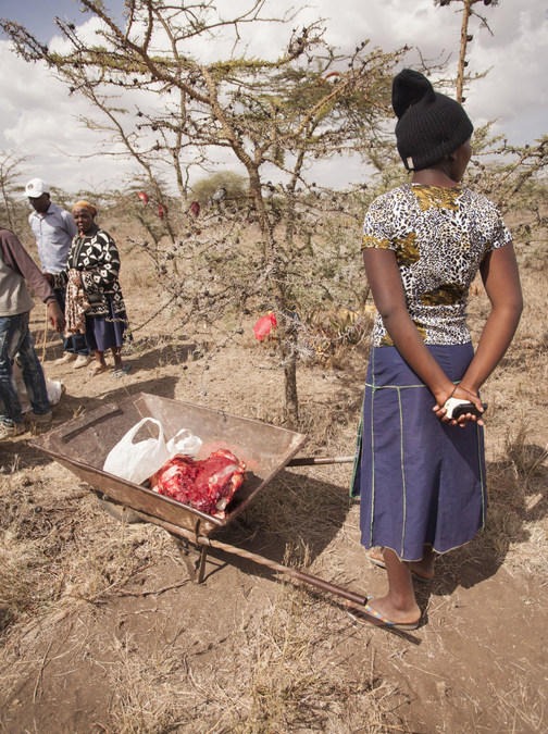 elephant meat, community, Laikipia County, Kenya