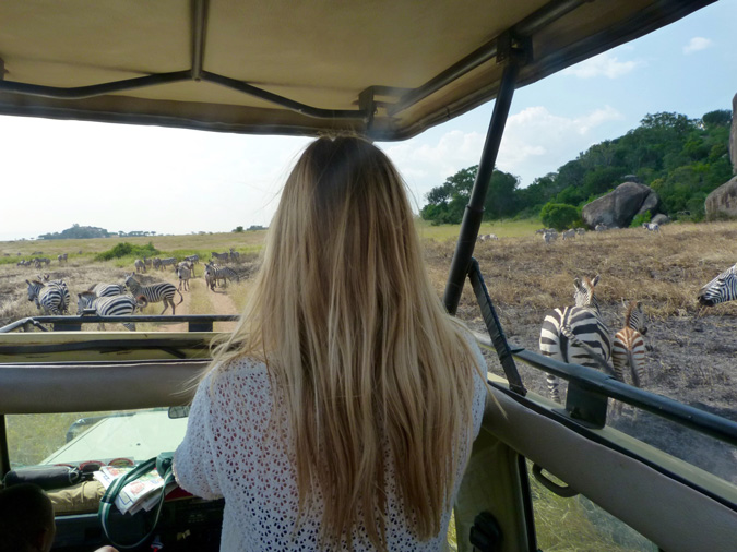 wildlife safari in Tanzania